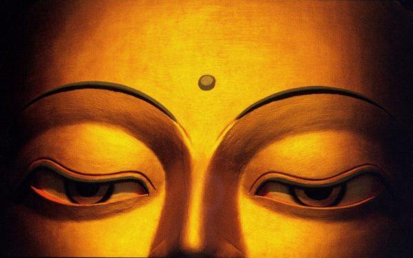 Những lời Phật dạy về cuộc sống