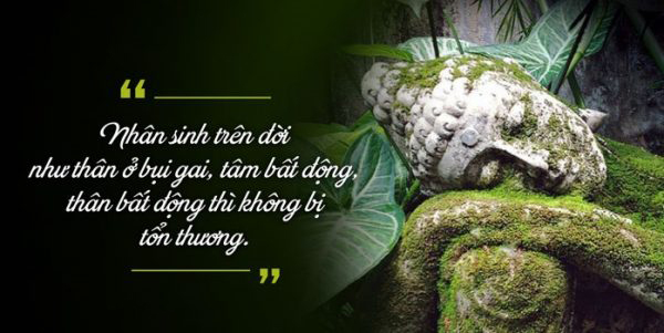 Phật giáo về tình yêu